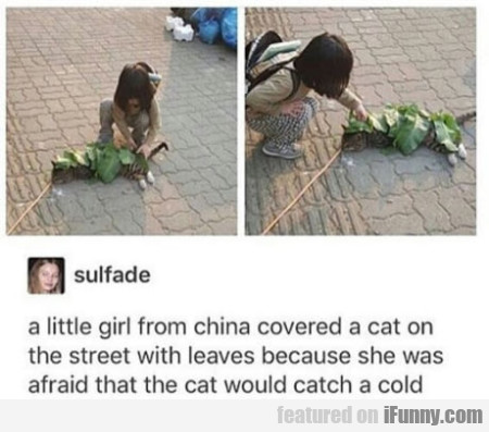 A Little Girl From China Covered A Cat On The...