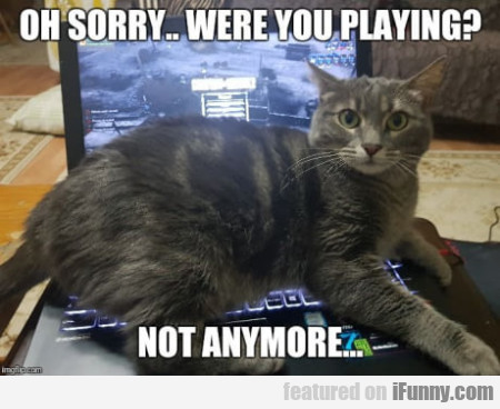 Oh Sorry... Were You Playing - Not Anymore