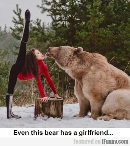 Even This Bear Has A Girlfriend...