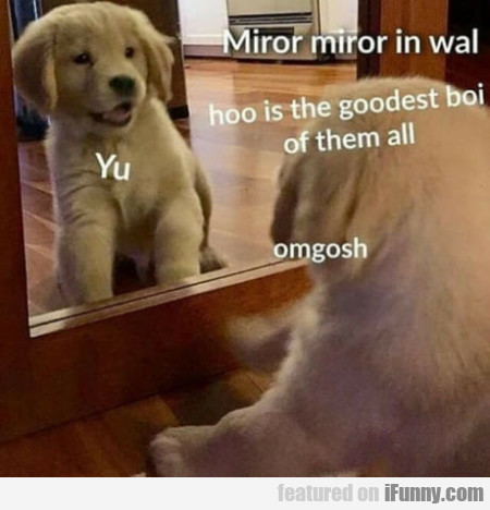 Miror Miror In Wall Hoo Is The Goodest...