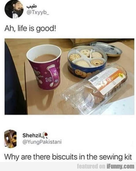 Ah, Life Is Good! Why Are There Biscuits In The..