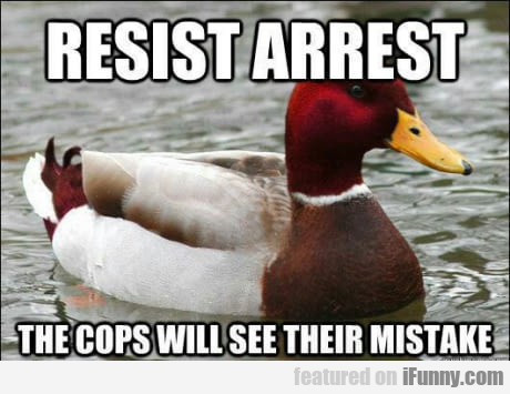 Resist Arrest - The Cops Will See Their Mistake