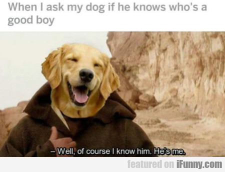 When I ask my dog if he knows who's a good boy...
