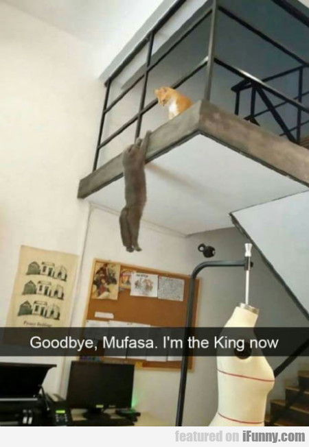 Goodbye, Mufasa. I'm The King Now