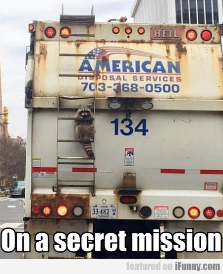 On A Secret Mission