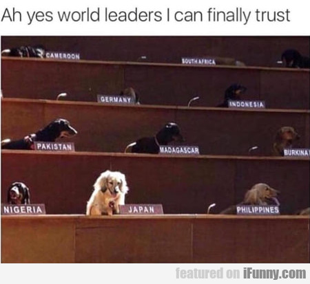 Ah Yes World Leaders I Can Finally Trust