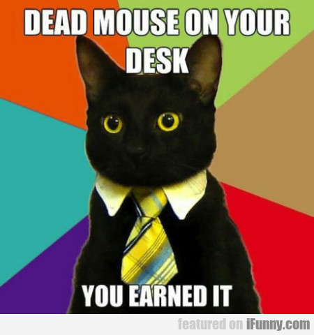 Dead Mouse On Your Desk - You Earned It