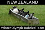 New Zealand Winter Olympic Bobsled Team