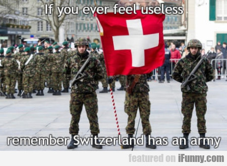 If You Ever Feel Useless Remember Switzerland...