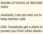 Shark Attacks At Record High - Australia - Lets...
