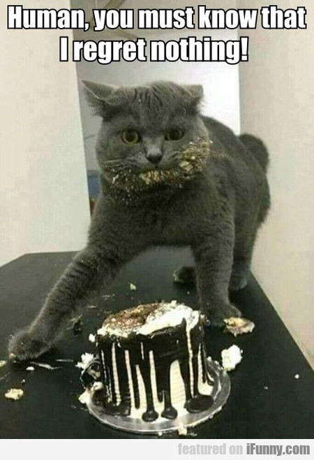 Human, You Must Know That I Regret Nothing!