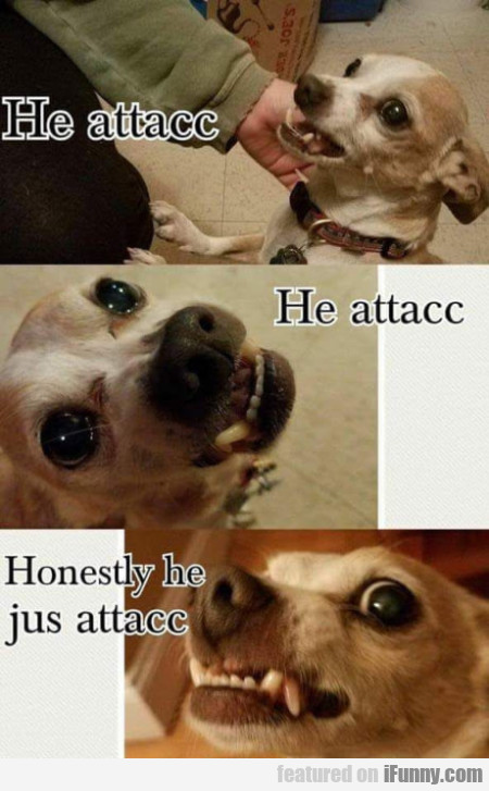 He Attacc He Attac - Honestly He Jus Attacc