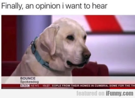 Finally An Opinion I Want To Hear