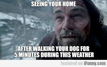 Seeing Your Home - After Walking Your Dog...