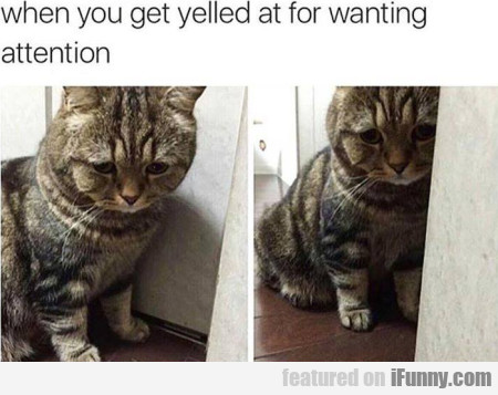 When You Get Yelled At For Wanting Attention...
