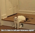 Jim, It's Time To Call Your Insurance Agent!