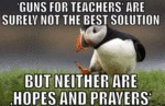 Guns For Teachers Are Surely Not The Best...