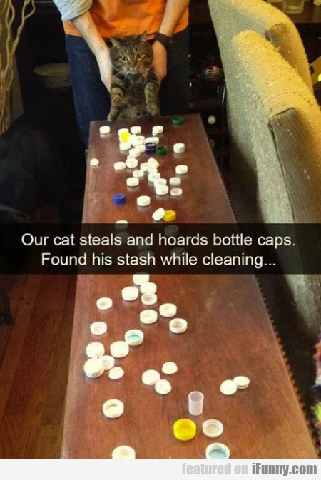 Our Cat Steals And Hoards Bottle Caps