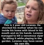 This Is 1 Year Old Lorenzo. He Shocked His...
