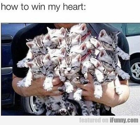 How To Win My Heart