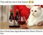 This Will Be Me In The Future - Never Drink...