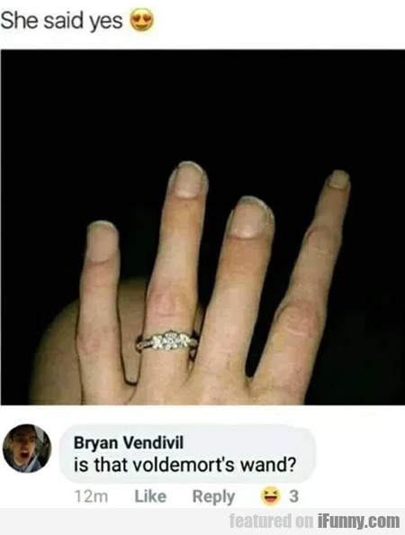 She Said Yes - Is That Voldemort's Wand..