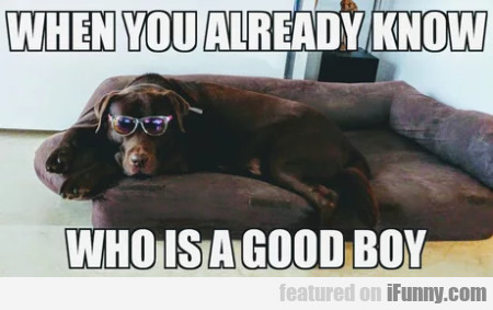 When you already know who is a good boy