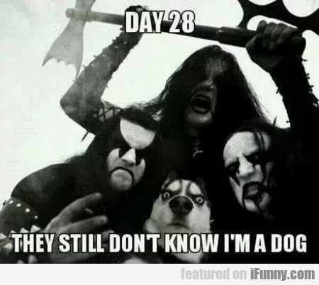 Day 28 - They Still Don't Know I'm A Dog