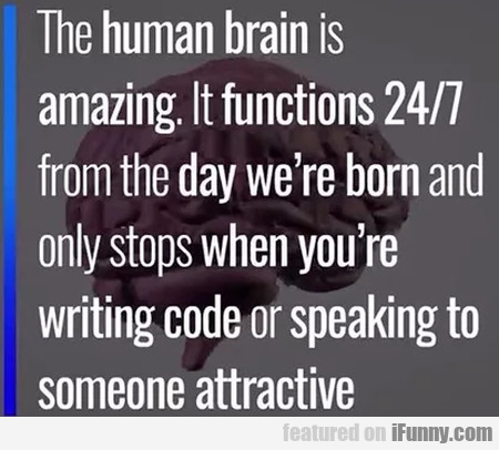 The Human Brain Is Amazing. It Functions 24/7...