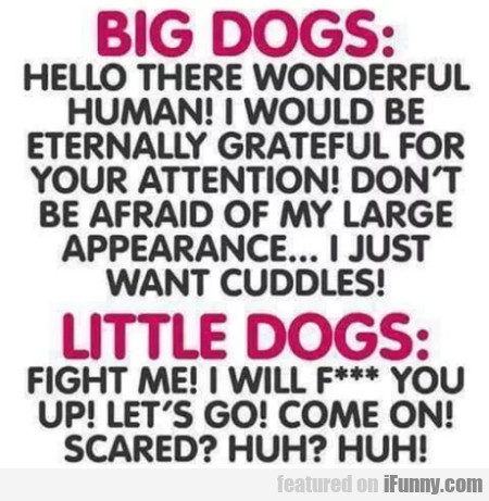 Big Dogs - Hello There Wonderful Human! I Would...