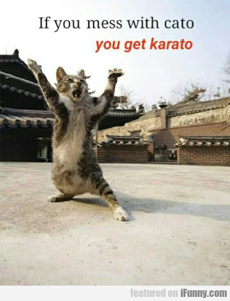If You Mess With Cato You Get Karato
