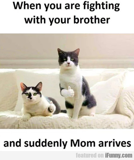 When You Are Fighting With Your Brother And...