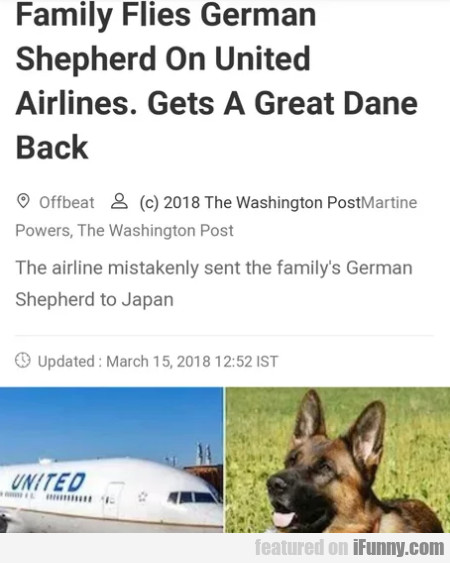 Family flies german shepherd on united airlines...