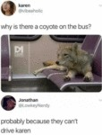 Why Is There A Coyote On The Bus?