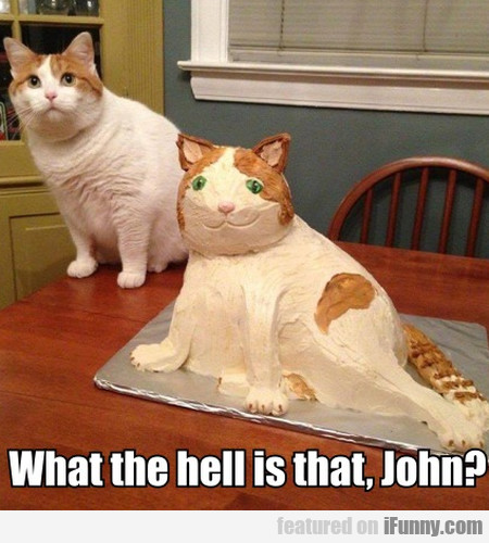 What The Hell Is That John?