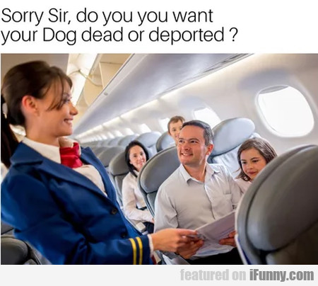 Sorry Sir, do you want your Dog dead or deported?