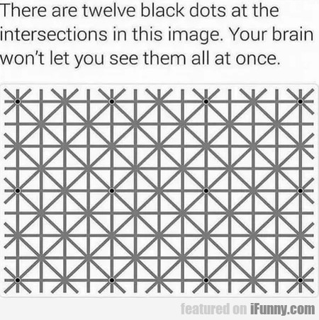 There Are Twelve Black Dot At The Intersections...