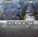 Obama - Trump - The Gym On Chest Day