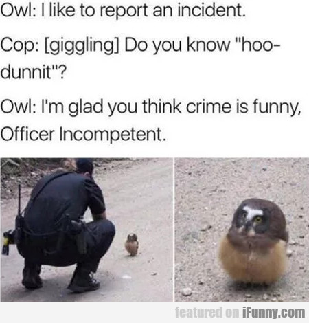 Owl: I Like To Report An Incident - Cop Giggling..