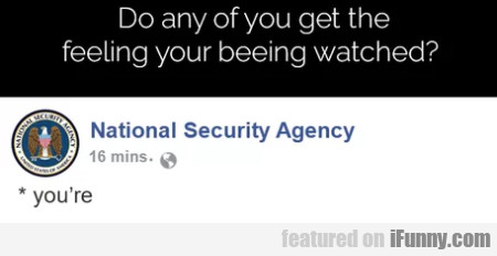Do Any Of You Get The Feeling Your Beeing Watched?
