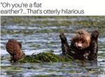 Oh You're A Flat Earther ... That's Otterly...