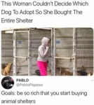 This Woman Couldn't Decide Which Dog To Adopt So..