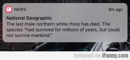 The Last Male Northern White Rhino Has Died. The..