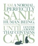 I Am A Normal, Perfectly Sane Human Being Until...