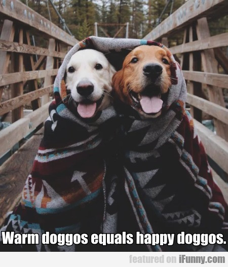 Warm Doggos Equals Happy Doggos