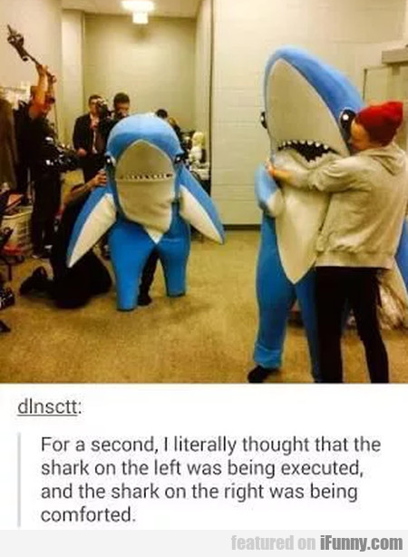 For A Second, I Literally Thought That The Shark..