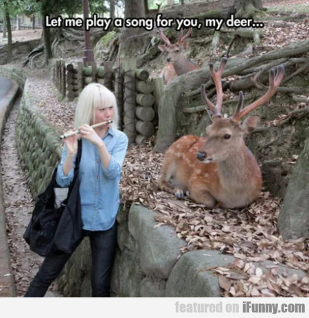 Let Me Play A Song For You, My Deer