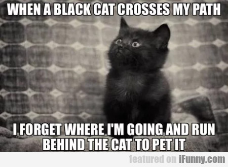 When A Black Cat Crosses My Path I Forget Where...