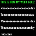 This Is How My Week Goes - Moooooooooonday...