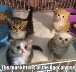 The Four Kittens Of The Apocalypse